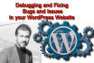 fix WordPress and WooCommerce bugs in 24 hours