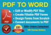 convert PDF to Word in 24hrs