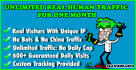 drive UNLIMITED Real Human traffic for one month to website