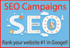 seo Campaign your website