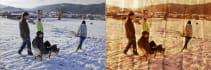 remove background,combine photos,make impress