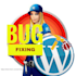 fix your WordPress Errors and Website Issues