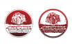 design your professional logo