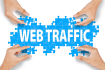 send 10,000 niche targeted human traffic to your website