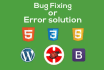 fix WordPress issues, fix PHP, html and css issues