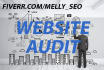 audit your website and give you full report with action plan