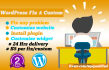 customize WordPress site in 24 Hrs
