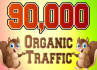 drive niche targeted ,website,traffic,visitors