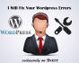 fix wordpress Issues ,Bugs and WordPress errors