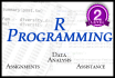 help you with your basic r assigments