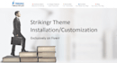 install strikingr wordpress theme on your website