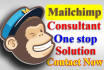 deliver any MAILCHIMP consultancy and template Designs