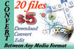 download, edit and convert up to 10 audio or video files