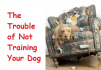 give you Dog Training PLR articles Premium Pack