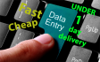 do fast data entry and mining for you under one day