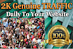 manually Drive 2k Real TRAFFIC Daily to Your Website for 10 days