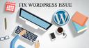 install,fix ,optimize or Build WordPress Blog or theme
