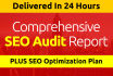 send Comprehensive SEO Audit in 24 Hours