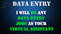 any type of Data Entry job, 3 hours