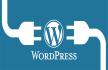 develop custom wordpress site