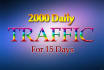 drive unlimited USA ,targeted website,traffic,daily visitors