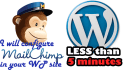 setup Mailchimp subscribe form in your WP site in 6 hour