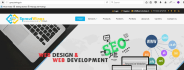 develop responsive professional website