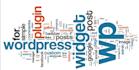 install, fix, move, optimize WordPress Blog or Themes