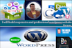 build responsive and professional wordpress website for you