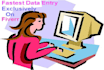 do all kind of fastest data entry works  accurately