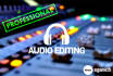 do professional audio editing or noise reduction