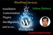 install and Customize WordPress Website