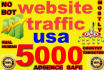 drive Super TARGETED visitors to your Site or Blog for usa only