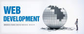 develop website for you