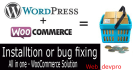 create Ecommerce website with WooCommerce or fix issues