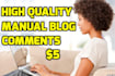 write 2 insightful manual comments on your blog site