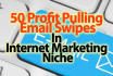give 50 Day Profit Pulling Email Swipes In IM Niche