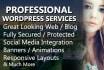 make professional word press website