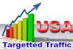 drive unlimited website traffic,visitors