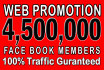 do Web Site Promotion Via 4,500,000 Social Members