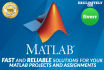 provide the BEST help with Matlab assignments