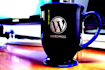 resolve any WordPress issue within 24 hrs Professionally