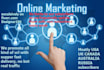 promote your website,solo ads, mlm,ebay,product, Shopify,Esty,book or ebook