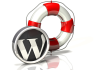 transfer your WordPress to another hosting