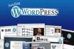 install wordpress theme like its demo