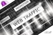 drive organic Website Traffic and genuine Social Visitors