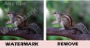 remove watermark from 10 images in 12 hours