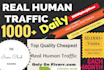 drive 1000 daily Real Human Traffic for 1 month
