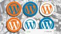 fix wordpress error issue and customize website