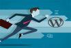 build professional wordpress website